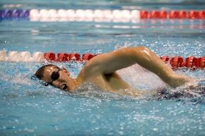 swimmer-659908_1920