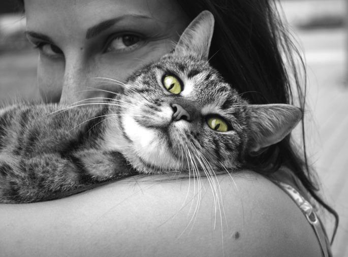 Hug your pets.jpg