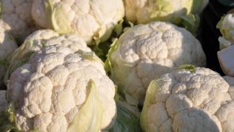 vegetables-699995_1920